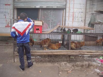 urumqi buddhist personals まだ保育園の入園決定通知は来ていませんが、決定したとしてという前提での話しです。 今までは漠然と、仕事が9時出勤で17時あがり、18時には迎えに行けるかなとか御飯はとかお弁当はとかそんな事ばかり考えていました.